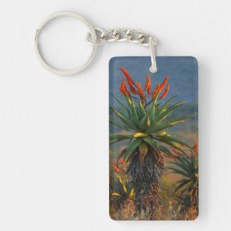 Mountain Aloe (Aloe Marlothii Berger) 2 Acrylic Keychain