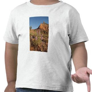 Mountain and Gayfeather Tee Shirt