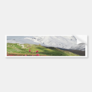 Mountain and Meadow Bumper Sticker