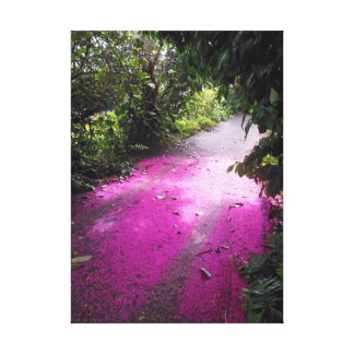 Mountain Apple Blossoms Canvas Print