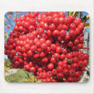 Mountain Ash Berry Mouse Pads