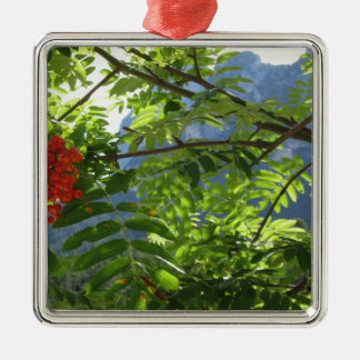 Mountain ash Sorbus Bush with red berries Metal Ornament