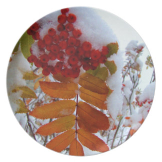 Mountain Ash Under First Snow; Merry Christmas Melamine Plate