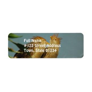 Mountain Bamboo Partridge Custom Return Address Labels