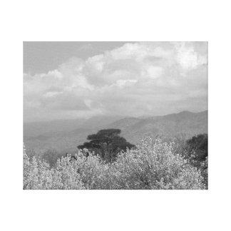 Mountain Beauty BW Canvas Print