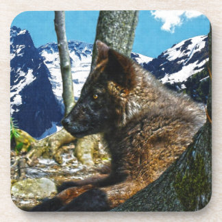 Mountain Black Wolf Resting by Trees Wildlife Art Coaster