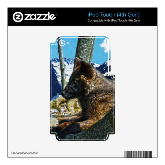 Mountain Black Wolf Resting by Trees Wildlife Art Decal For iPod Touch 4G