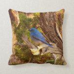 Mountain Bluebird at Arches National Park Throw Pillow