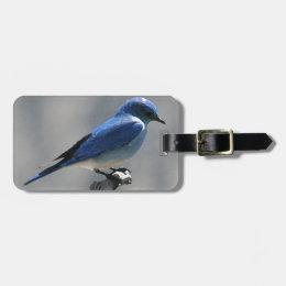 Mountain Bluebird Bag Tag