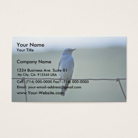 Mountain Bluebird Business Card