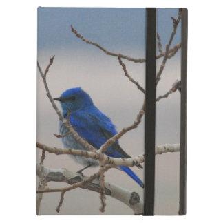 Mountain Bluebird Case For iPad Air