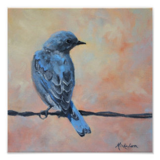Mountain Bluebird Fine Art Print