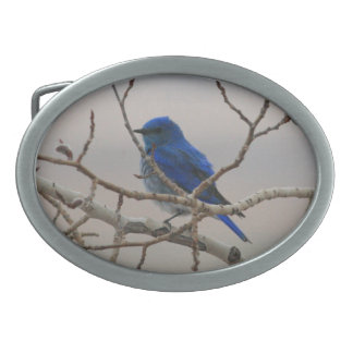 Mountain Bluebird Oval Belt Buckle