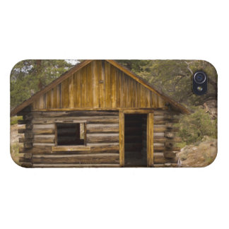 Mountain Cabin iPhone 4/4S Covers