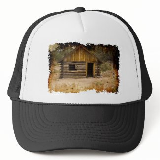 Mountain Cabin Mesh Hat