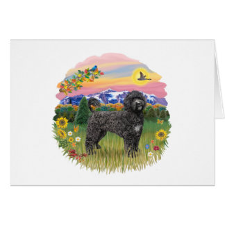 Mountain Country - Black Portie 2C Card