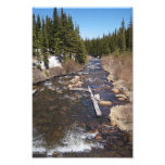 Mountain Creek Art Photo