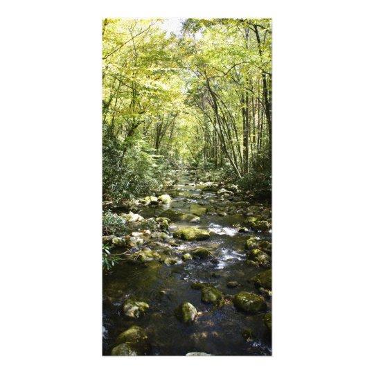 Mountain Creek Card