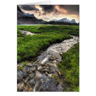 Mountain creek descends through meadow toward cards