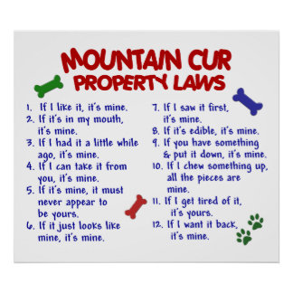 MOUNTAIN CUR PL2 POSTER