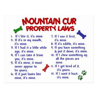 MOUNTAIN CUR Property Laws 2 Postcard