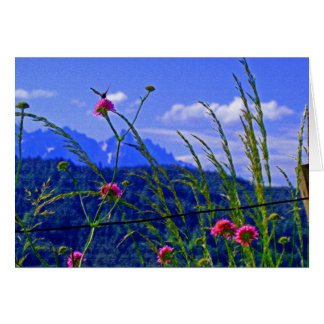Mountain Flowers Card