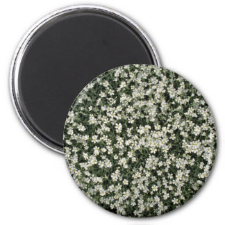 Mountain flowers flowers magnet