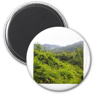 mountain   forest 2 inch round magnet