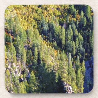 Mountain forest drink coasters