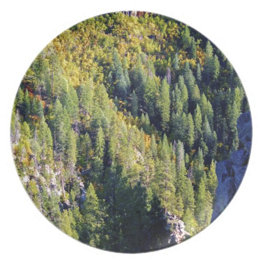 Mountain forest party plates
