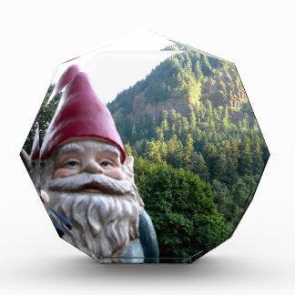 Mountain Gnome Award