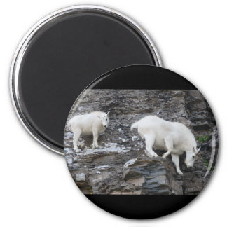 mountain goat 2 inch round magnet