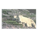 Mountain Goat Business Card