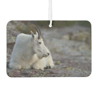 Mountain Goat Car Air Freshener