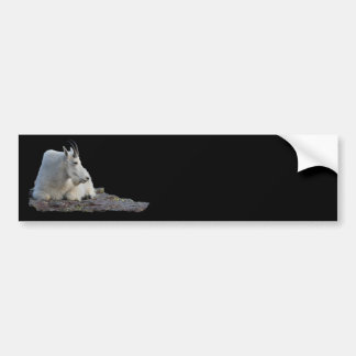mountain goat car bumper sticker