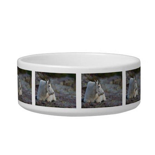 Mountain Goat Cat Water Bowl