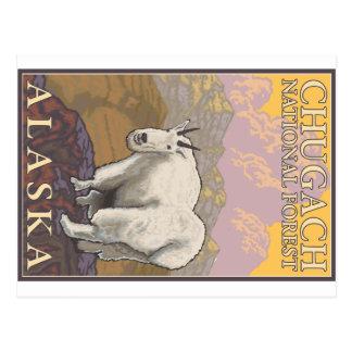 Mountain Goat - Chugach National Forest, Alaska Postcard