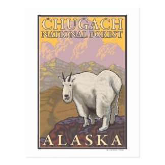 Mountain Goat - Chugach National Forest, Postcard