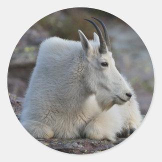 mountain goat classic round sticker