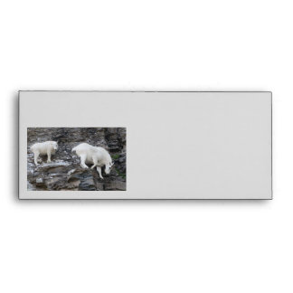 mountain goat envelope