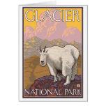 Mountain Goat - Glacier National Park, MT Greeting Cards