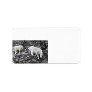 mountain goat label