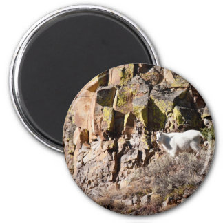 Mountain Goat Magnet