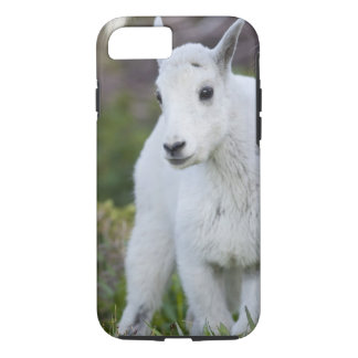 Mountain goat nanny with kid at Logan Pass in iPhone 7 Case