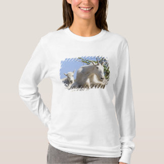 Mountain goat nanny with kid in Glacier National T-Shirt