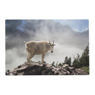Mountain Goat on Gunsight Pass Placemat