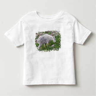 Mountain Goat, Oreamnos americanus, adult with 2 Toddler T-shirt