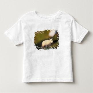mountain goat, Oreamnos americanus, kid on a 2 Toddler T-shirt