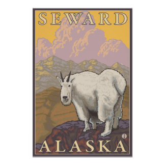 Mountain Goat - Seward, Alaska Poster