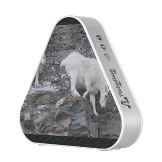 mountain goat speaker